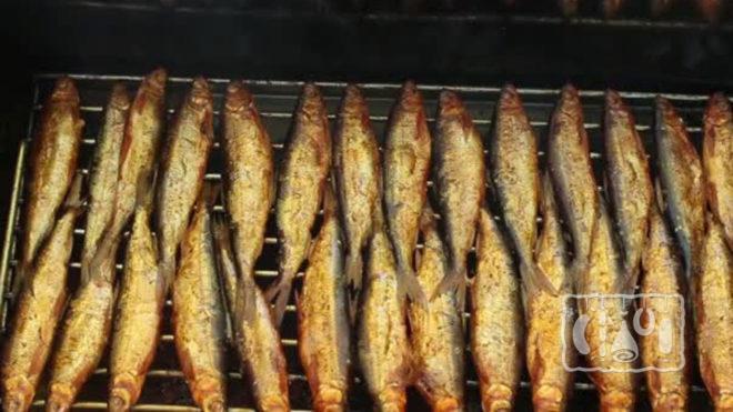 Копчение анчоусов горячим методом