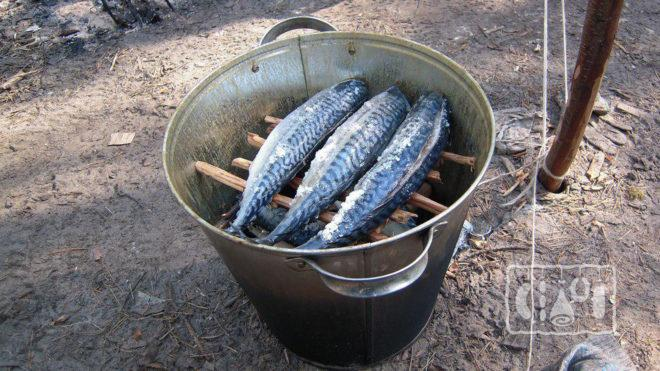 Копчение рыбы в ведре
