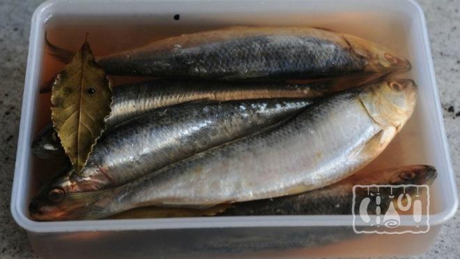 Рыба в классическом маринаде