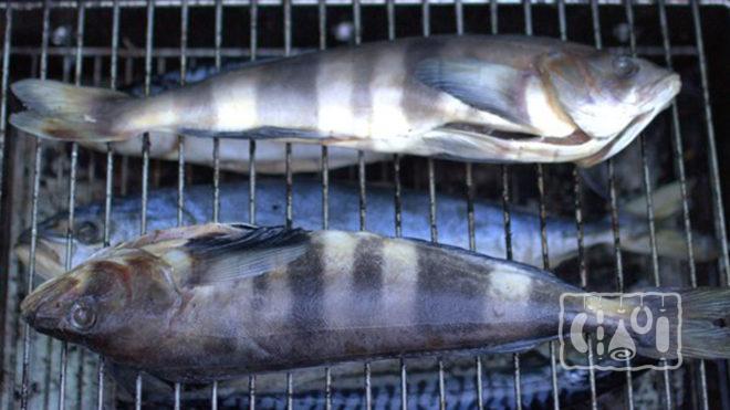 Рыба в коптильне на решетках