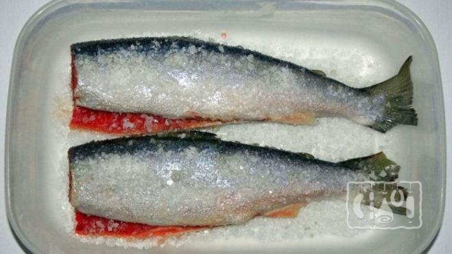 Сухой посол рыбы