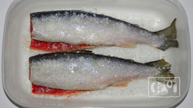 Сухой посол рыбы голец