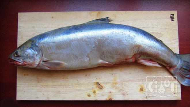 Свежая рыба голец