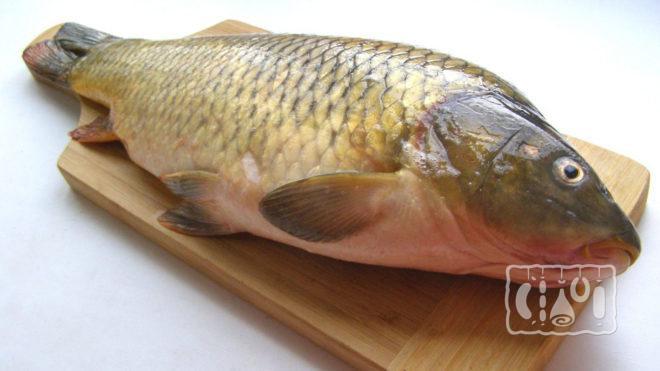 Свежая тушка рыбы