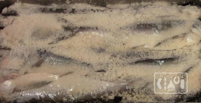 Сухая засолка рыбы