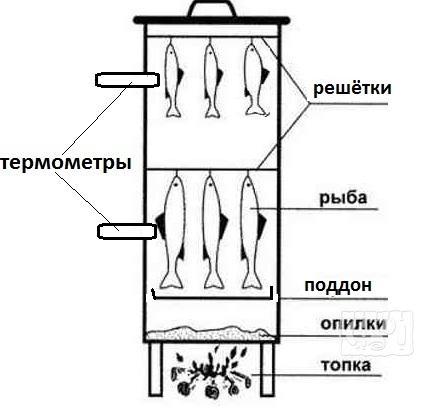 Как сделать шкаф для копчения рыбы