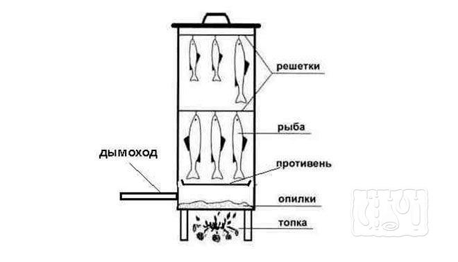 Комбинированная коптильня (схема)