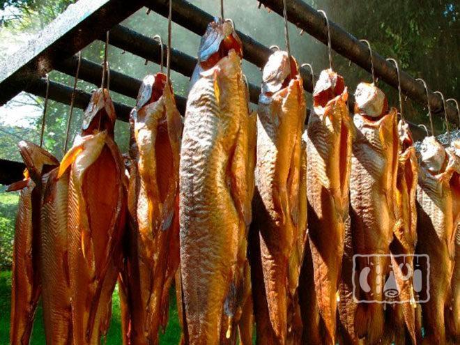 Рыба коптится в коптильни