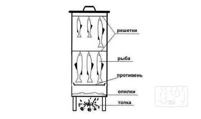 Коптильня горячего копчения (схема)