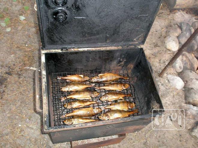 Фото коптильни для копчения рыбы
