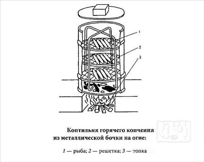 Фото схемы коптильни горячего копчения