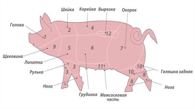 Фото свиной туши